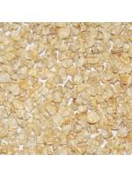 Super Sweet Sweetcorn F1 White Lady - 30 Seeds - Zea Mays var. Saccharata