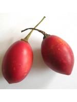 Cyphomandra Betacea - 20 Seeds - Tree Tomato Tamarillo Tropical Fruit