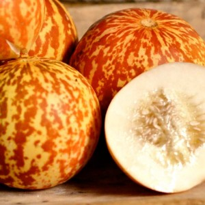 Melon Tigger - 10 Seeds - Heirloom - Cucumis Melo Reticulatus