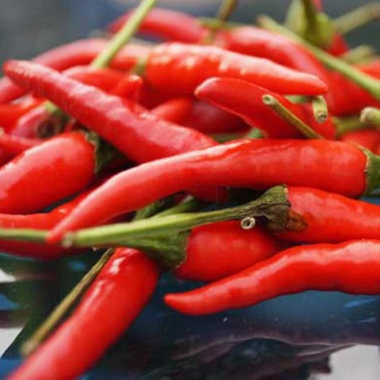 Red Birds Eye Chili - 50 Seeds - Super Hot Chilli !!