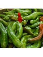 Chilli Pepper Anaheim - 100 seeds - Mild Heat Chili