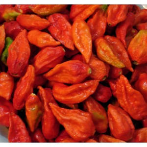 Chili Naga Ghost Bhut Jolokia - 15 Seeds - ULTRA Hot Chili !!