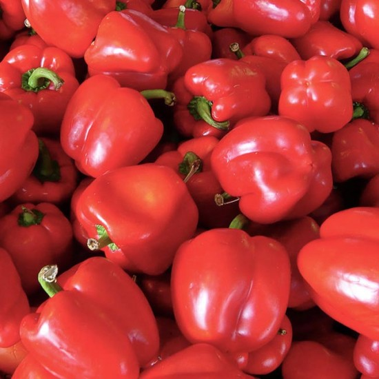 Red Sweet Bell Pepper - 150 Seeds - Capsicum Annuum
