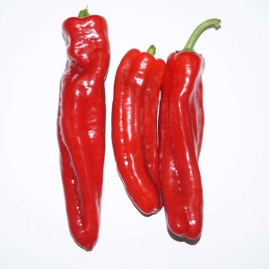 Pointed Red 'Romano' Pepper - 50 Seeds - Capsicum Annuum - Pepper