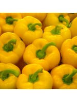 Yellow Sweet Bell Pepper - 150 Seeds - Capsicum Annuum