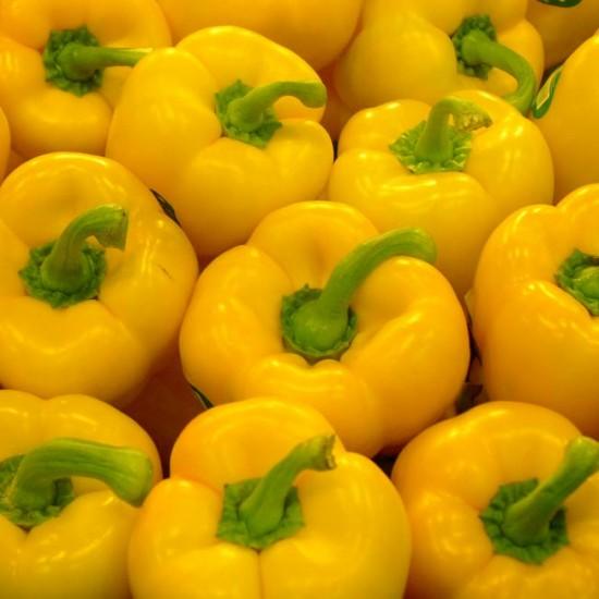 Yellow Sweet Bell Pepper - 150 Seeds - Capsicum Annuum