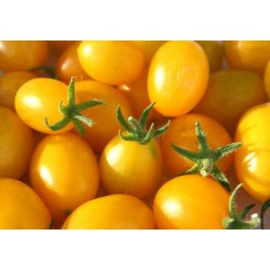Tomato - Ildi Cherry - 50 Seeds