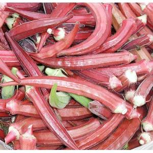 Okra - Clemson's Spineless Lady's Fingers - 100 Seeds