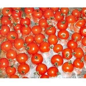 Cherry Tomato Seed - Gardeners Delight - 100 Seeds
