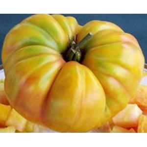 Tomato - Oaxacan Jewel - 50 Seeds - Heirloom Tomato Cultivar