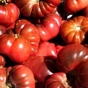 Tomato - Purple Calabash - 60 Seeds - Heirloom Cultivar