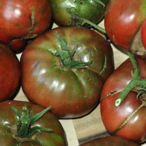 Tomato - Black From Tula - 50 Seeds - Heirloom Cultivar