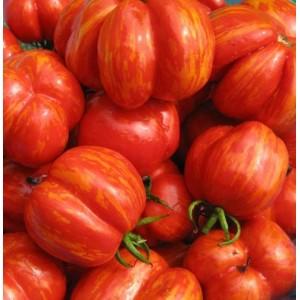 Tomato Striped Cavern - 30 Seeds - Heirloom Variety