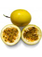 Passiflora Edulis v Flavicarpa - 25 Seeds - Yellow Passion Fruit Flower
