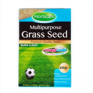 Multi Purpose Lawn Seed 250g Box Ryegrass + Red Fescue